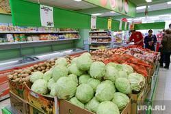 Пятерочка. Супермаркет. Челябинск., капуста, овощи, супермаркет