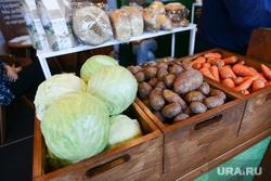 Открытие XXIV областной агропромышленной выставки «АГРО-2017». Челябинск, капуста, овощи, сельское хозяйство, морковь, картофель