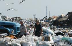 Свалка. Челябинск., мусор, чайки, свалка