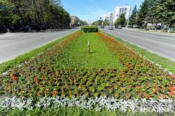 Городские клумбы. Челябинск, клумба по проспекту ленина