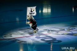 КХЛ. Хоккей Трактор - Металлург. Челябинск, ледовая арена, маскот, медведь трактор