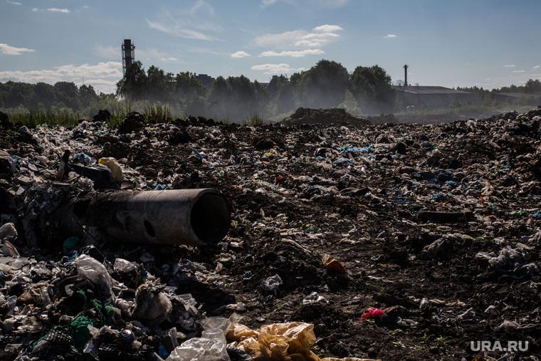 Завод по сортировке мусора. Тюмень, мусор, тбо, свалка