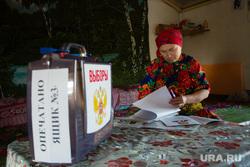 Предварительное голосование на хантыйских стойбищах. Сургутский район, выборы, коренное население, предварительное голосование, ханты голосуют, кмнс, аборигены