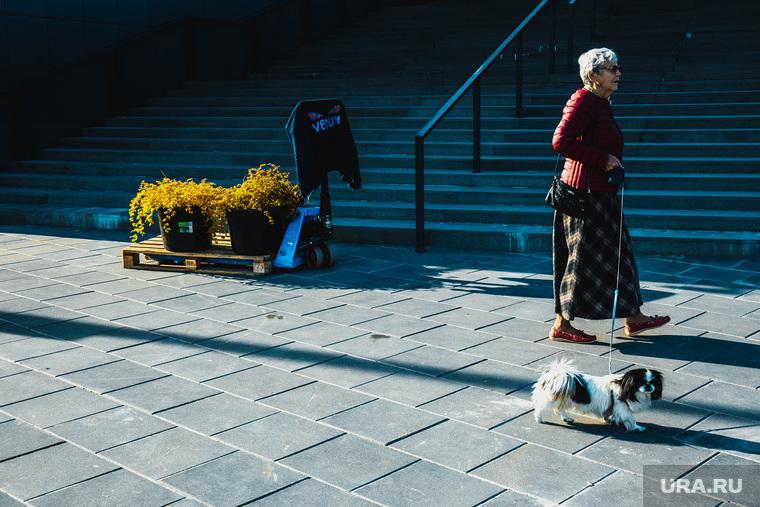 Виды города. Екатеринбург, пенсионерка, прогулка с собакой
