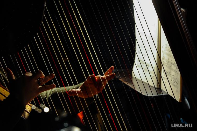 Репетиция спектакля Богема Большого театра в Челябинске, арфа, струны