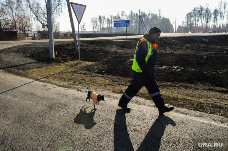 Выезд Бориса Дубровского по дорогам. Челябинск, дорожные рабочие, собака шпонка, дорожники