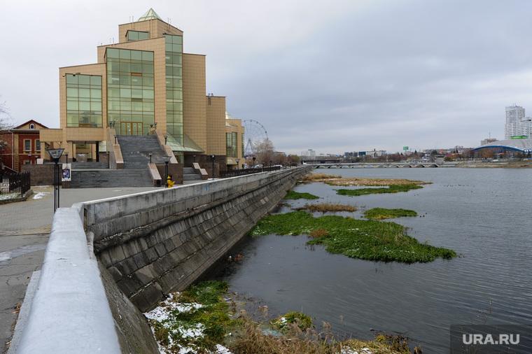 Заросли на реке Миасс. Челябинск, краеведческий музей, город челябинск, река миасс