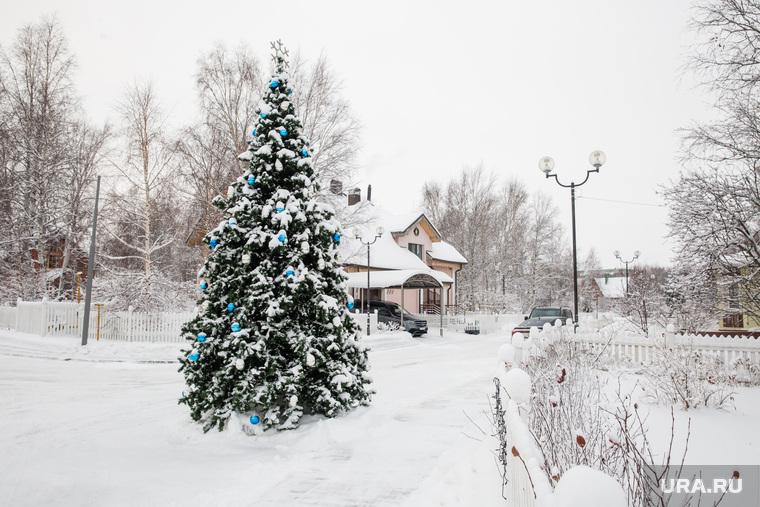 """Коттеджный поселок """"Березка"""". Сургут, елка новогодняя"""