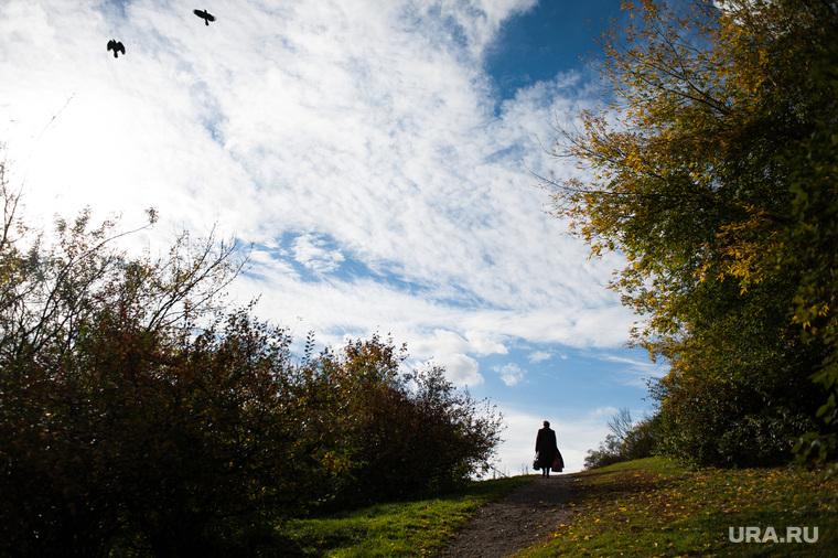 Виды Екатеринбурга, прогулка, деревья, парк, осень