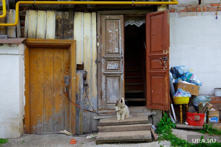 Виды Кунгура, старый дом, охрана, крыльцо, собака