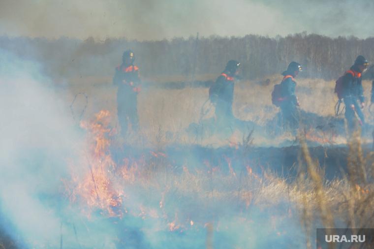 Учения МЧС по тушению лесных пожаров и сельскохозяйственных палов. Челябинск, огонь, пожарные
