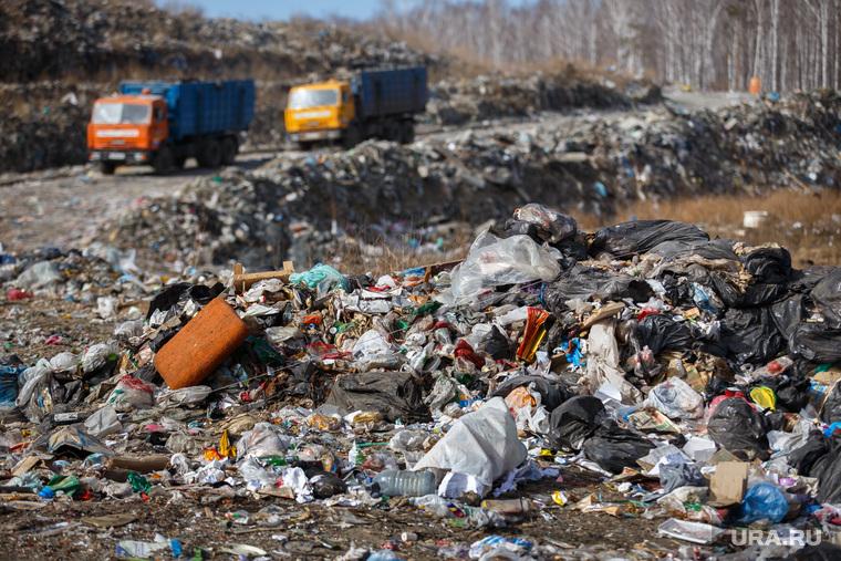 Полигон ТБО и цех сортировки. «Спецавтобаза». Екатеринбург, мусор, камаз, спецтехника, грузовики, гора, отходы, хлам, лка, тбо, куча, окружающая среда, свалка, экология, отбросы, помои, мусоровозы