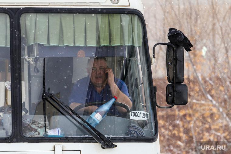 Профилактическое мероприятие «Автобус» Дорожные полицейские проверяют соответствие технического состояния. Курган, пазик, общественный транспорт, птица, автобус, паз, маршрутка, маршрутное такси, полиция, проверка документов