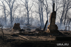 Лесные пожары. Курган