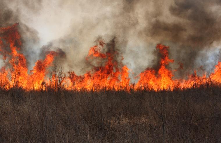 Клипарт depositphotos.com, экология, пламя, дым в лесу, лесные пожары, огонь, пожар, тушение пожара, пожарник, пожарный, природа