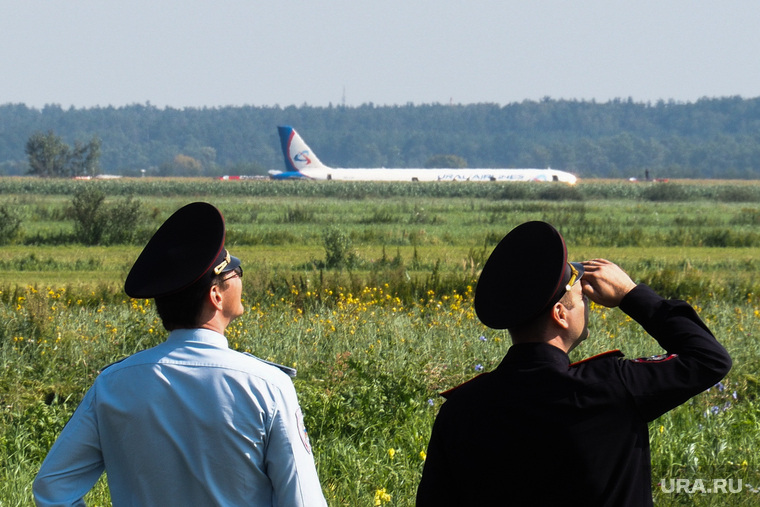 Самолет «Уральские авиалинии», совершивший аварийную посадку на кукурузном поле. Московская область, самолет, уральские авиалинии, airbus А321, полиция, сотрудник полиции, самолет, аварийная посадка, аэробус а321, эйрбас