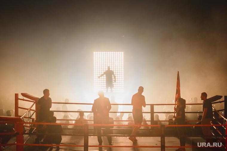 Турнир по боксу и ММА в ДИВСе. Екатеринбург, бокс, ринг, мма, mma