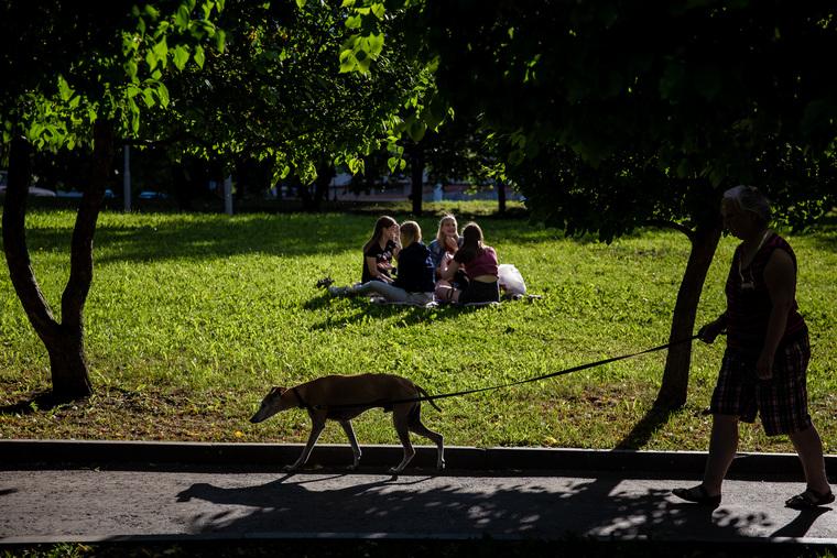 Встреча храбрых в сквере на драме. Необр.Екатеринбург , отдых на траве, пикник, лето, прогулка с собакой, сквер на драме