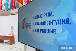 Презентация голосования по поправкам к Конституции РФ в ЦИК. Москва