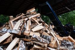 Екатеринбургское лесничество во время подготовки к летнему пожароопасному сезону. Екатеринбург