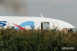 Самолет «Уральские авиалинии», совершивший аварийную посадку на кукурузном поле. Московская область