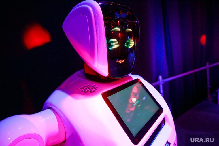 XIX Всемирный фестиваль молодежи и студентов. Первый день. Сочи, робот, новые технологии, инновации, современные технологии