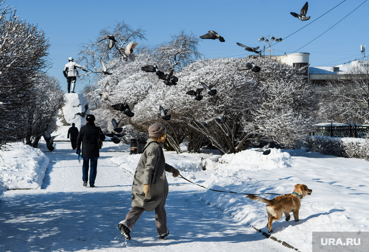 Сквер у памятника Якову Свердлову. Екатеринбург