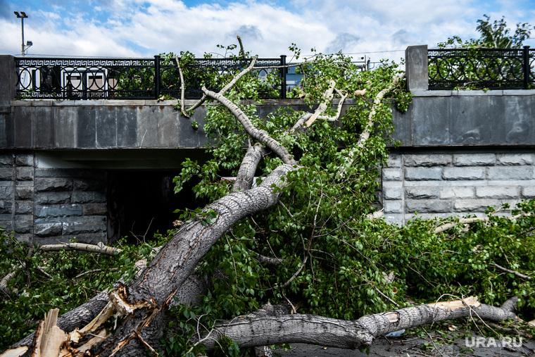 Последствия урагана в Екатеринбурге