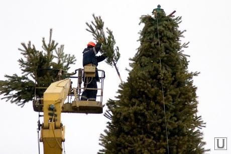 Подготовка к Новому году Курган, установка елки, автовышка
