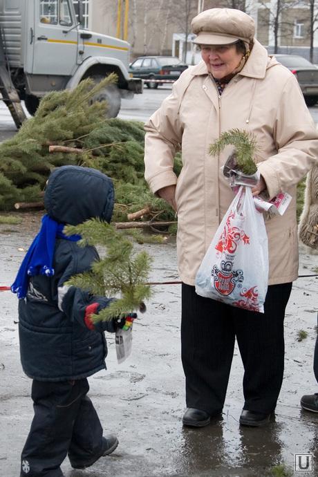 Подготовка к Новому году Курган, ребенок, установка елки, сосновые ветки