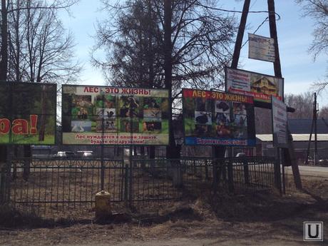 Поселок Придорожный. Кетовский район Курганской области , поселок придорожный, рубка леса