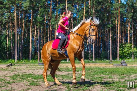 Пресс-конференция, посвященную первому в мире конкурсу красоты среди лошадей. Екатеринбург, лошадь, наездник