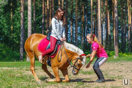 Пресс-конференция, посвященную первому в мире конкурсу красоты среди лошадей. Екатеринбург, лошадь, катание на лошадях
