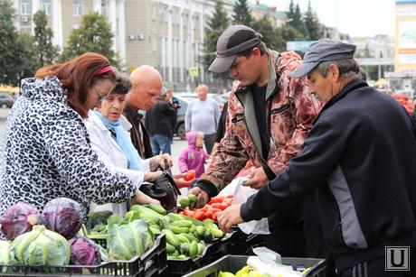 Открытие овощной ярмарки Курган, овощи, покупатели, овощная ярмарка, фермеры