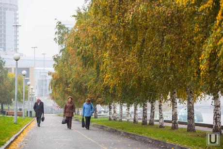 Осень и яблони цветут. Екатеринбург, аллея, осень