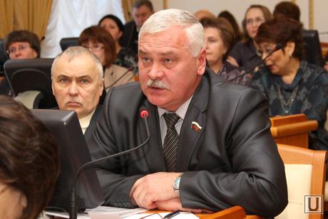 Публичные слушания проекта областного бюджета Курган, грачев александр