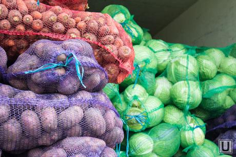 Тюменская ярмарка. Нижневартовск., капуста, овощи, продукты, картошка, тюменская ярмарка