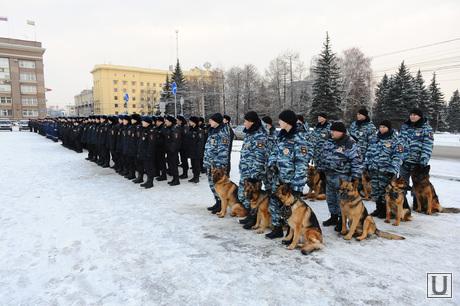 Полиция. Челябинск., собака, полиция, кинолог, строй