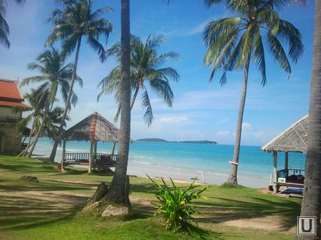 клипарт, море, тропики, пальмы, океан, тайланд