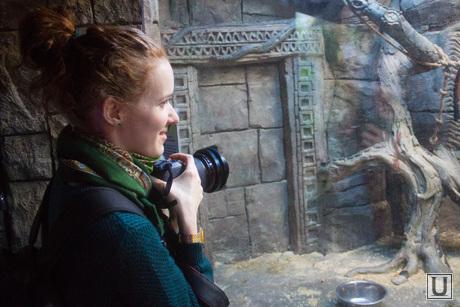 Обновленная стела. Экскурсия для СМИ. Ханты-Мансийск., экскурсия по выставке, фотограф