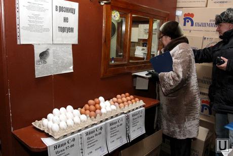 Рейд по оптовой продуктовой базе Курган, семина наталья, рейд, яйцо куриное, оптовая база, продукты питания