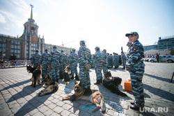 Полиция на Площади 1905 года. Екатеринбург, площадь 1905, служебная собака, кинологи, омон