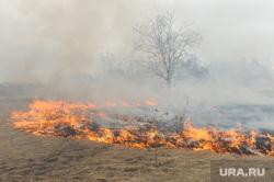 Лесные пожары. Учения МЧС. Челябинск, пожар, трава, огонь