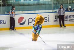 Хоккей. Югра-Нефтехимик. Ханты-Мансийск, хоккейный клуб югра, хк югра, мамонт