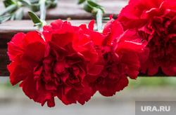 День подразделений специального назначения. Магнитогорск, цветы, гвоздики, память, траур