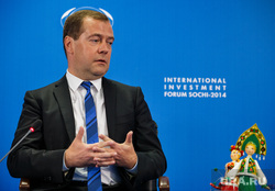 Медведев и ко. Форум Сочи-2014, портрет, нимб, медведев дмитрий, пальцы в замок
