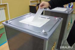 Выборы губернатора Тюменской области. Нижневартовск., урна для голосования, выборы
