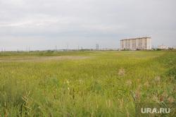 Земельный участок под METRO. Курган, поле, трава, лето