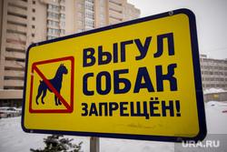 Пресс-конференция с Евгенией Умниковой в ИТАР-ТАСС. Екатеринбург, запрет, выгул собак