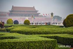 Пекин. Китай, пекин, площадь тяньаньмэнь, зелень